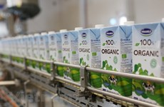 Vinamilk wins FMCG brand owner for 8th consecutive year