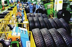 US initiates investigation into Vietnamese tyre