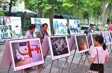 Photo exhibition highlights daily life during COVID-19