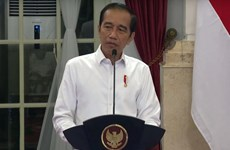 Indonesian President orders quick disbursement of budget for COVID-19 fight