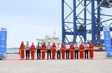 Cranes shipped to port in Ba Ria-Vung Tau province