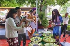 HCM City, Mekong Delta stimulating tourism