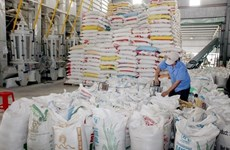Rice exports up nearly 18 percent in H1
