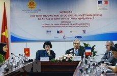 Webinar seeks ways for firms of Vietnam, France to capitalise on EVFTA