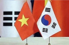 Vietnam, RoK look to boost partnership