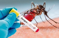 Laos reports 54 new cases, one more death from dengue fever