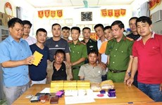 Large haul of drugs seized in Dien Bien