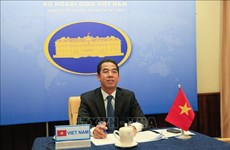 Vietnam, UK diplomatic officials hold online talks