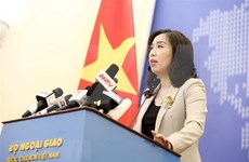 Vietnam committed to lifting ties with New Zealand: Foreign Ministry spokesperson