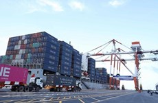 Cargo handled at seaports maintains growth in seven months