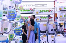 Sales of household appliances soar during promotion month