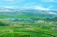 Moc Chau Milk to sell shares, raise capital