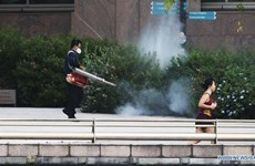 Dengue fever worsens in Singapore