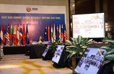 East Asia Summit Senior Officials' Meeting held online
