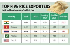 Thailand's rice exports forecast to hit decade low