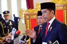 Indonesia streamlines public apparatus amid pandemic