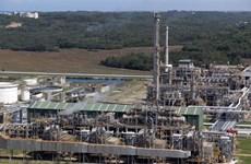 Binh Son Refining and Petrochemical faces revenue slump