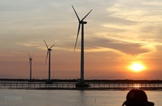 Large-scale wind power project planned in Binh Thuan