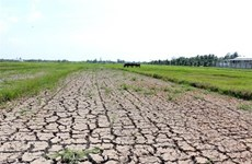 Plan aims to improve Vietnam's adaptation to climate change