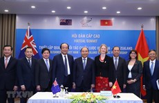 Analysts upbeat about Vietnam - NZ strategic partnership