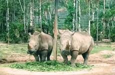PM directs suspension of wildlife import