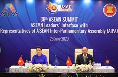 Vietnam mirrors ASEAN's ideals, values: Indonesian scholar