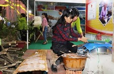 Fair highlights specialties of four southern provinces