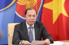Vietnam enjoys great benefit from ASEAN membership: Deputy FM