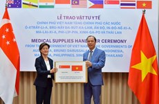Singapore sees Vietnam valuable friend during COVID-19