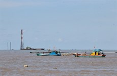 Ca Mau aims to become energy centre of Mekong Delta by 2030