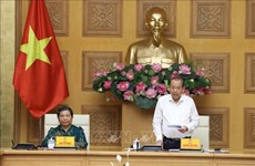 Preparations for second National Congress of Vietnamese Ethnic Minorities discussed
