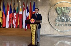 Vietnam's entry into ASEAN opens new chapter in Southeast Asia relations: Ambassador