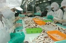 Squid, octopus exports bounce back in June