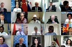 Vietnam calls on international community to help Syria cope with COVID-19