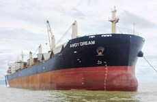 Anti-COVID-19 measures applied to Hong Kong's bulk carrier