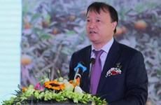 Vietnam, Chile seek to foster economic, trade cooperation