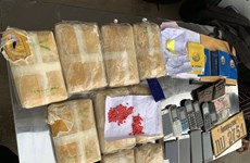 Vietnamese, Lao localities jointly bust cross-border drug trafficking ring