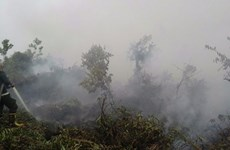 ASEAN works to respond to transboundary haze pollution