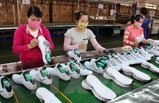 Footwear exports likely to bounce back at year's end