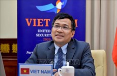 Vietnam ready to cooperate in combating terrorism: diplomat