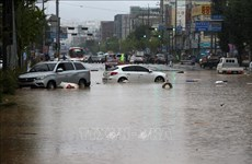 Condolences to RoK over losses caused by torrential rains