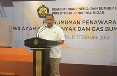Indonesia offers 10 oil and gas projects in 2020