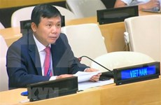 Vietnam supports UNSC's resolution for peace, security in Guinea-Bissau