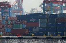 RCEP negotiations enter final round: Indonesian official