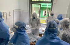 Vietnam records 11 new COVID-19 infection cases