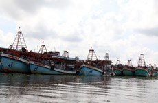 Kien Giang cracking down on illegal fishing