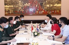 Vietnam, Cuba seek ways to intensify medical cooperation