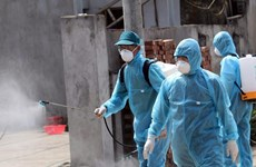 Disinfectant allocated from reserves to Quang Nam, Health Ministry
