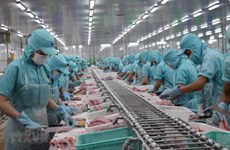 Seafood exports increase after EVFTA comes into effect