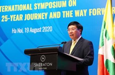Vietnam actively contributes to ASEAN's development: official